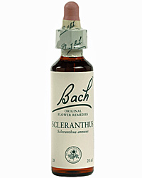 Scleranthus Flores de Bach es un remedio floral indicado para las personas que padecen indecisión.