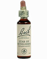 Star of Bethlehem Flores de Bach es un remedio floral indicado para las consecuencias de un choque nervioso, mental o físico, como resultado de accidentes, noticias graves, la pérdida de alguien querido, decepciones repentinas, sustos, etc.
