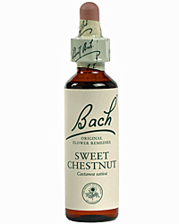 Sweet Chestnut Flores de Bach es un remedio floral indicado para la angustia mental extrema.
