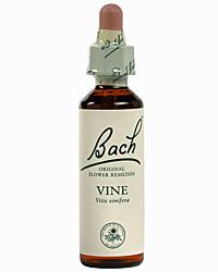 Vine Flores de Bach es un remedio floral indicado para las personas que dominan a otras. Son, generalmente, muy eficaces, incluso muy dotadas y ambiciosas, pero utilizan sus indudables dotes para dominar y someter a otras.