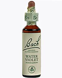Water violet Flores de Bach es un remedio floral indicado para personas orgullosas y reservadas.