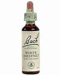 White Chestnut Flores de Bach es un remedio floral indicado para los pensamientos obsesivos y preocupantes que parecen imposibles de controlar.