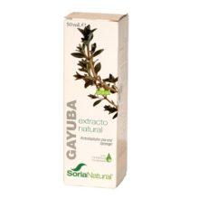 Extracto Gayuba Soria Natural es un complemento alimenticio a base de extracto natural de hojas de Gayuba (Arctostaphylos uva-ursi Spreng.) en glicerina vegetal indicado en casos de infecciones en las vías urinarias.