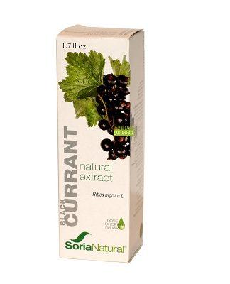 Extracto Grosellero negro Soria Natural es un complemento alimenticio indicado en casos de reumatismo, gota, edemas, hipertensión, etc.