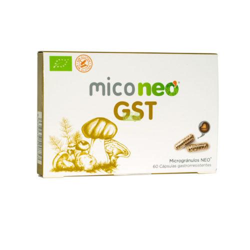 Miconeo GST es un complemento alimenticio a base de extractos de Cúrcuma,Reishi,Melena de León y Shiitake.