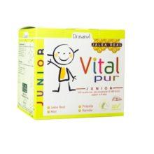 Vitalpur Junior Drasnvi es un complemento alimentico a base de Jalea Real ,Vitamina C,miel, própolis, estracto de acerola y polen de abeja.