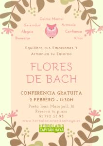 TALLER FLORES DE BACH | 02/02/19 | 11:30